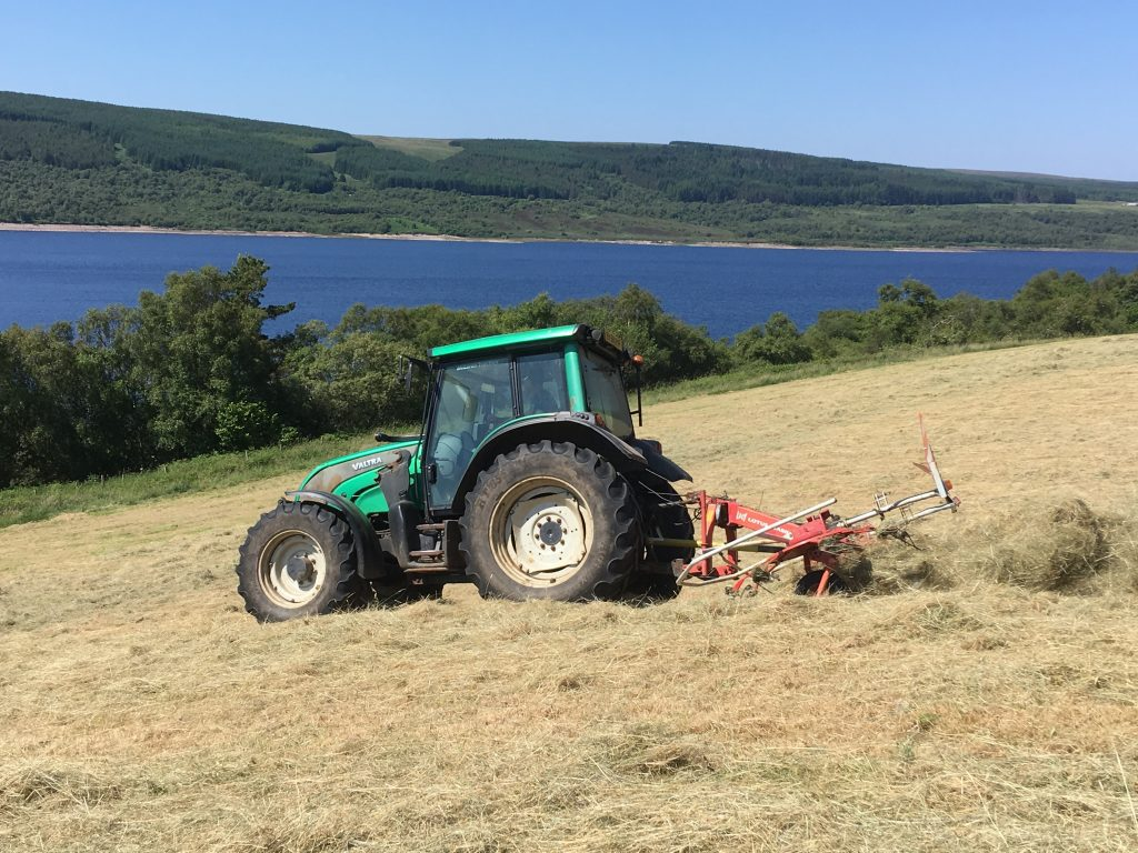A tractor moving through a field hay